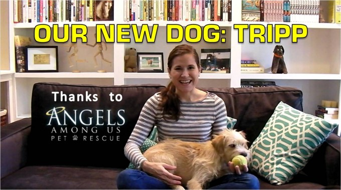 Our New Dog: Tripp | Thanks to Angels Among Us Pet Rescue